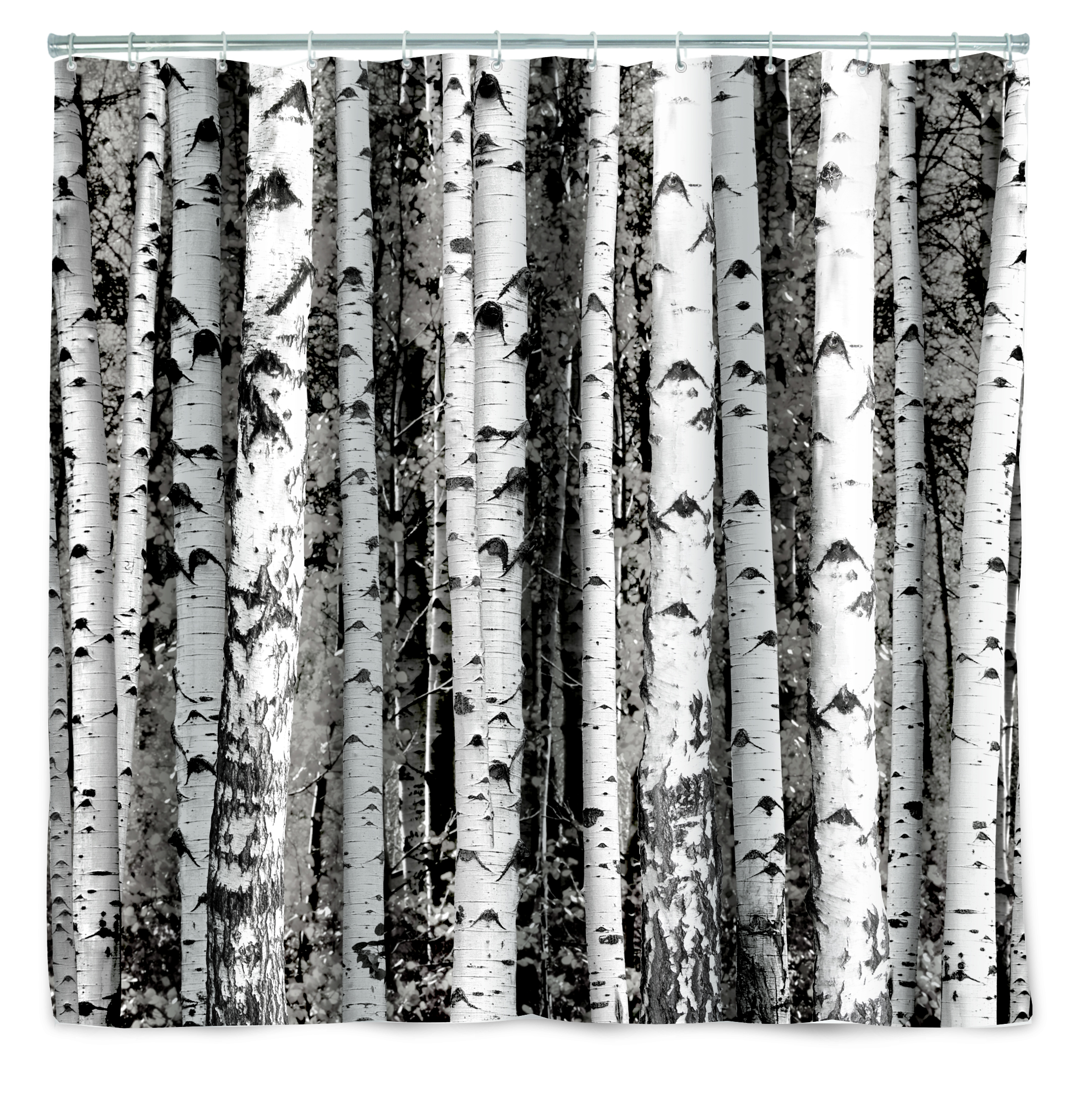 Duschvorhang Birkenwald Baumstämme von Birken- kramsen